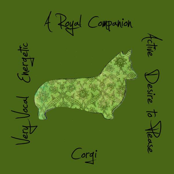 Corgi Dog Breed Traits Print