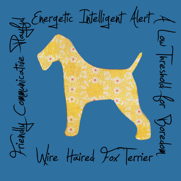 Wire Haired Fox Terrier Dog Breed Traits Print