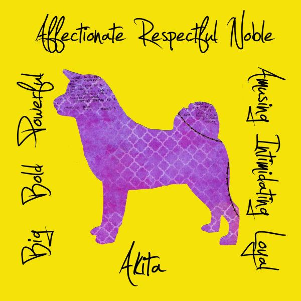 Akita Dog Breed Traits Print