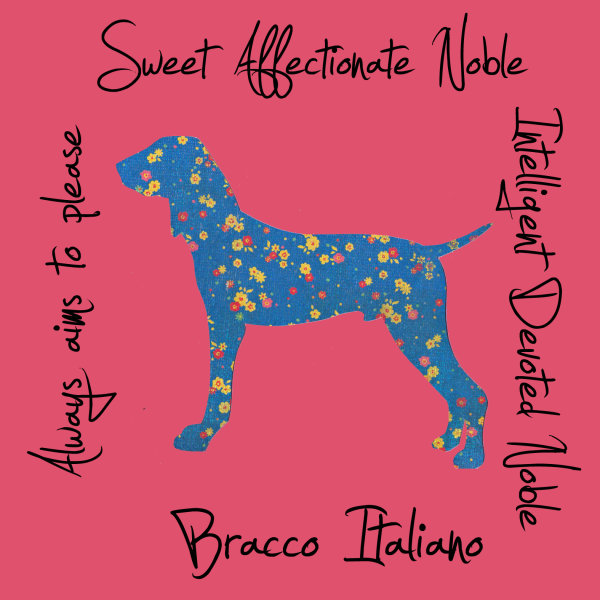 Bracco Italiano Dog Breed Traits Print