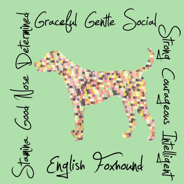 English Foxhound Dog Breed Traits Print