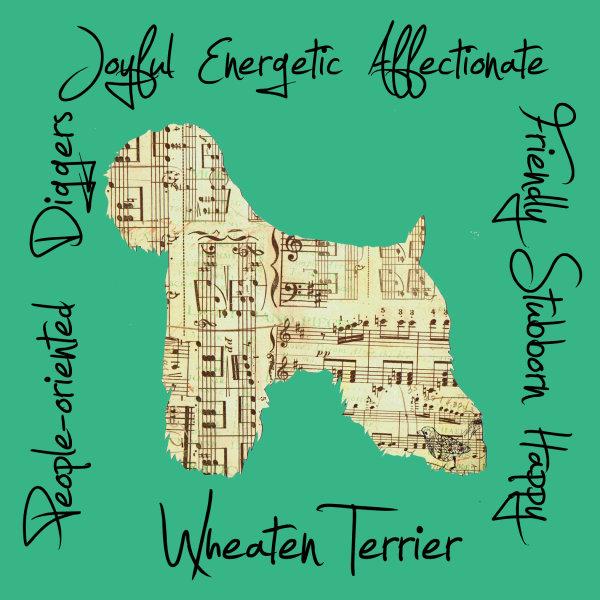 Wheaten Terrier Dog Breed Traits Print