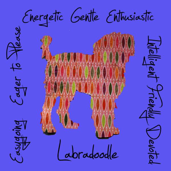 Labradoodle Dog Breed Traits Print