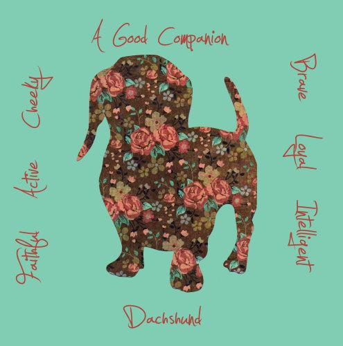 Dachshund Dog Breed Traits Print