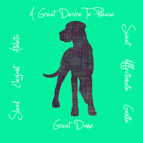 Great Dane Dog Breed Traits Print