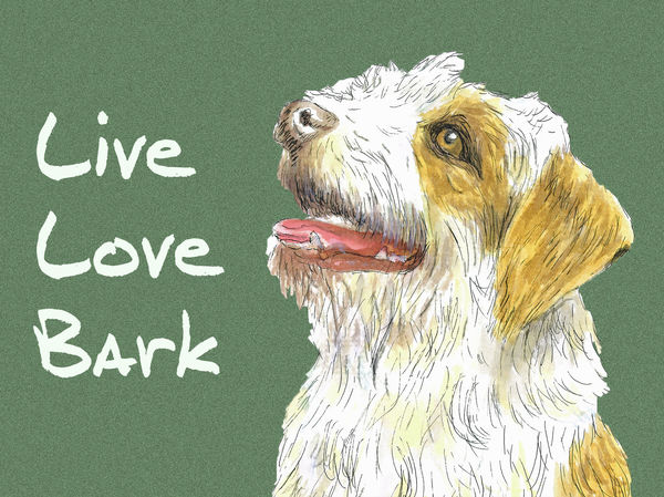 Live, Love, Bark - Blank Card