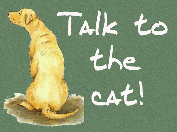 Talk to the cat! - Blank Card