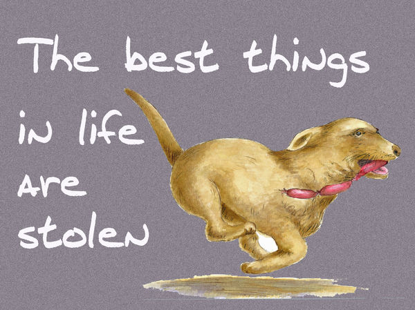 The best things in life are stolen - Blank Card