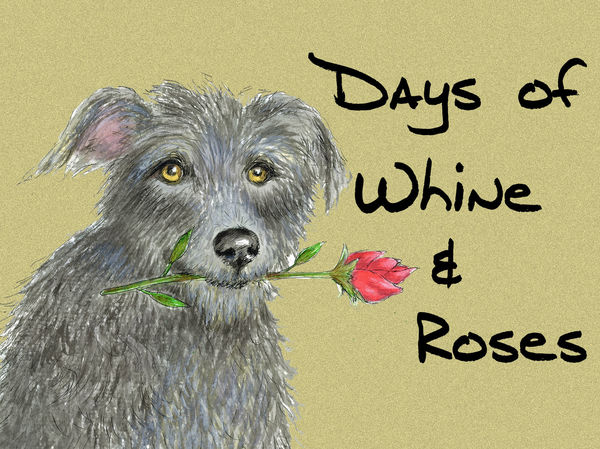 Days of Whine & Roses - Blank Card