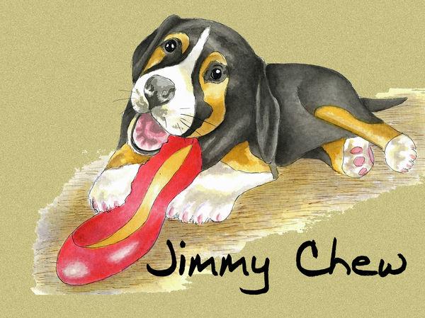 Jimmy Chew - Blank Card