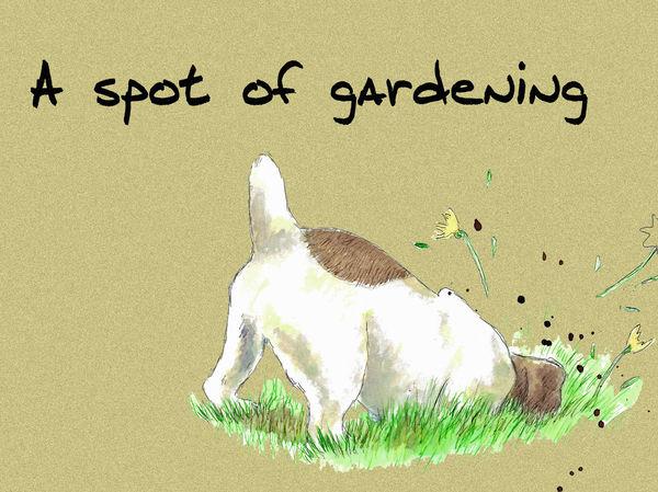 A spot of gardening - Blank Card