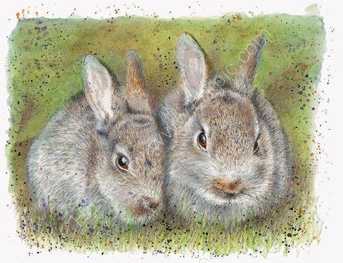 Rabbits - Wildlife Print by Clare Thompson