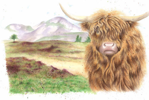 """Beefy"" - Wildlife Print by Clare Thompson"