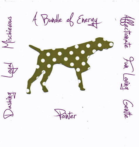 Pointer Dog Breed Traits Print