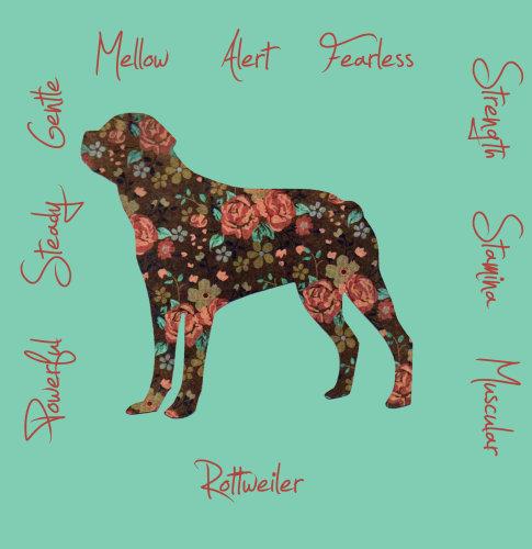 Rottweiler Dog Breed Traits Print