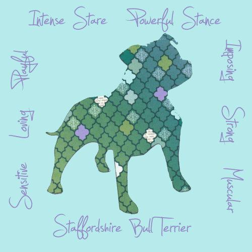 Staffordshire Bull Terrier Dog Breed Traits Print