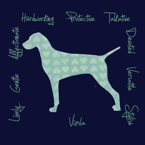 Vizsla Dog Breed Traits Print