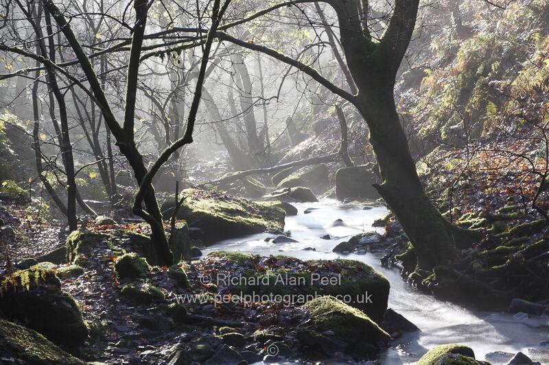 Loadpit Beck Shipley Glen West Yorkshire England UK