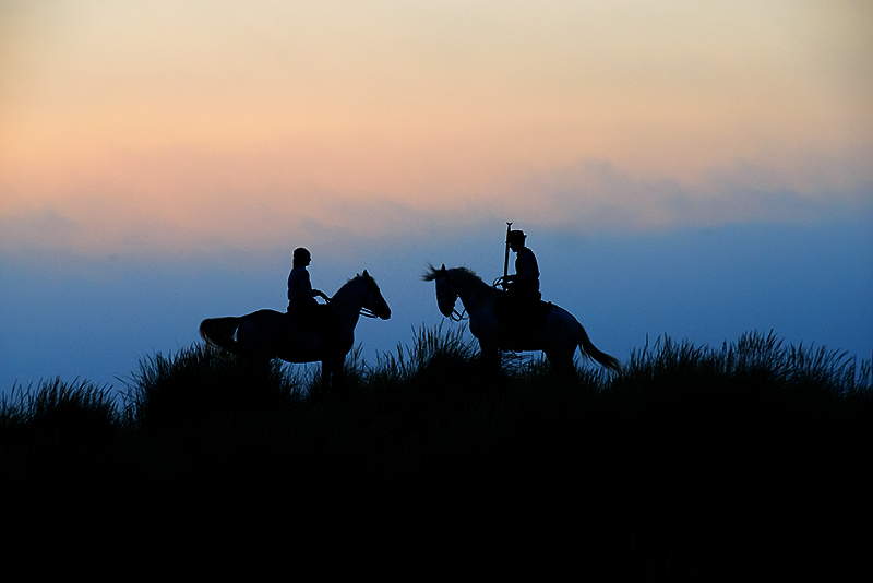 4090-Waiting Sunrise In The Dunes Les-Gardians- Silhouettes