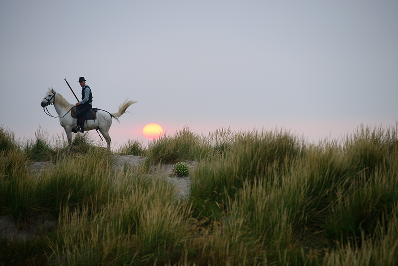 4155-On The Dunes Sunrise Un Gardian Almost Time To Go To Work