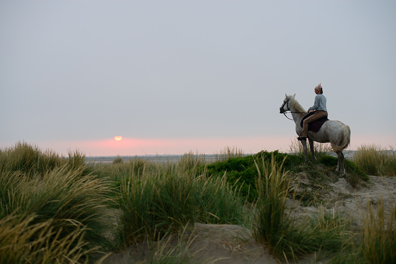 4164-1 On The Dunes Sunrise Une Gardianne Almost Time To Go To Work