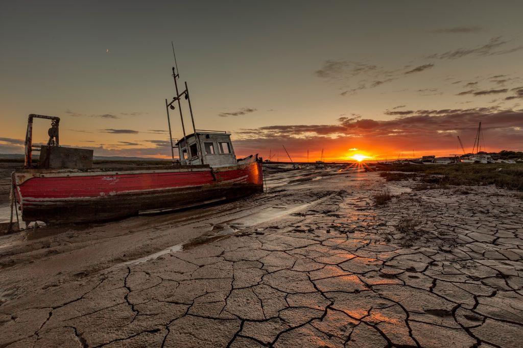 Sheldrakes Sunset