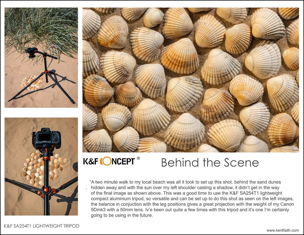 k&f behind the scene shells copy10