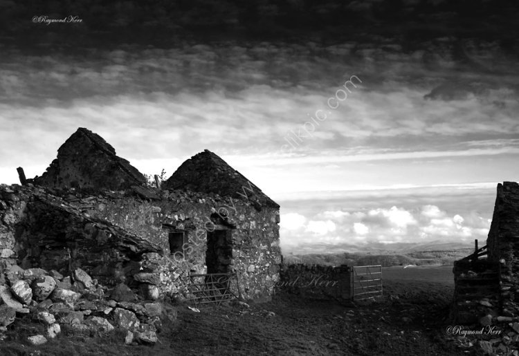 Derelict Farm - Anglesey 4490