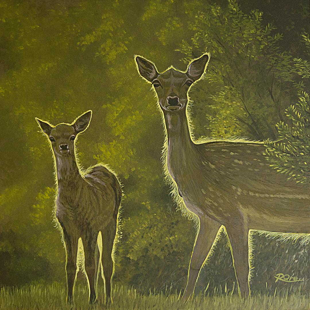 2 Deer at Sunset
