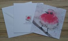 5X5 inches greetings card 'Robin Red breast'