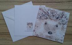 5X5 inches greetings card 'Mr Hedgehog'