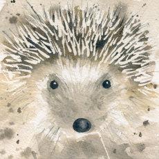 Mr Hedgehog, fine art print