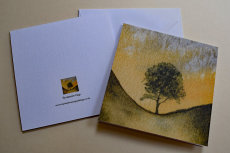 5X5 inches greetings card 'Sycamore gap'