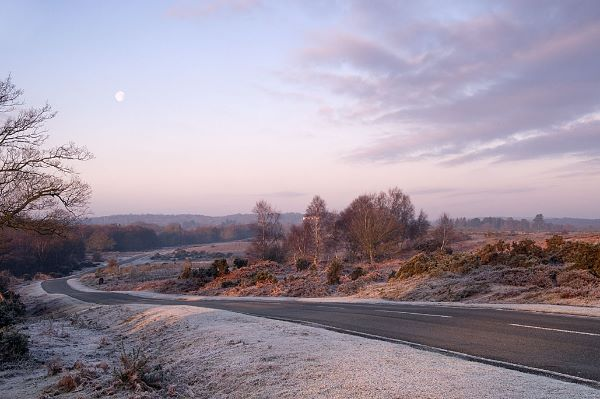 A frosty road to Lyndhurst