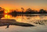 Sunrise at Hatchet Pond