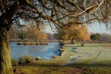 Bushy Park Richmond upon Thames UK