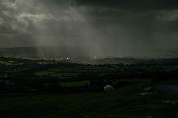 Dartmoor near Tavistock During a Rainstorm