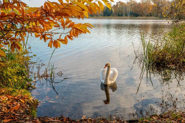 Virginia Water Lake