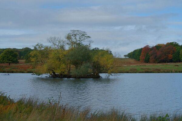 Pen Ponds Richmond Park London
