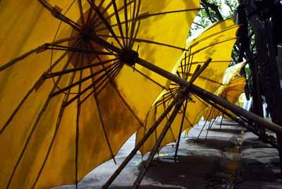 Parasols, China