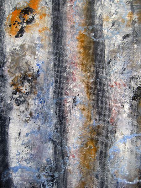Birch Textures