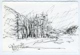 Ingram 3 - 1 minute sketch