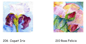 CARDS: 12cm sq. series 2