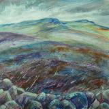 Simonside Hills, hints of heather