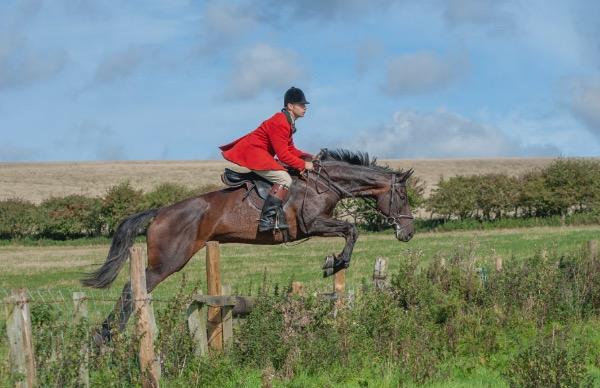 Berwickshire Hounds 2019 Autumn