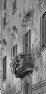 Ischia -  Balcony and Flowers