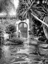 Ischia -  Villa Durelli Garden