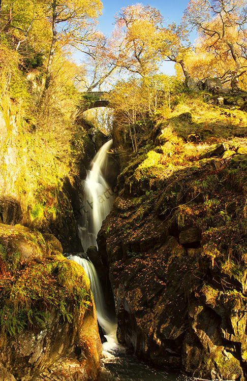 Aira Force 001