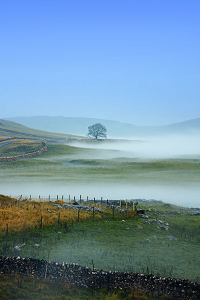 Mist at Malham