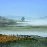Mist at Malham